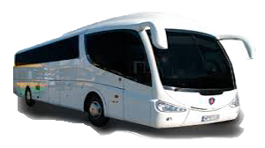 Bus Private Airport Transfer Cancun Los Cabos